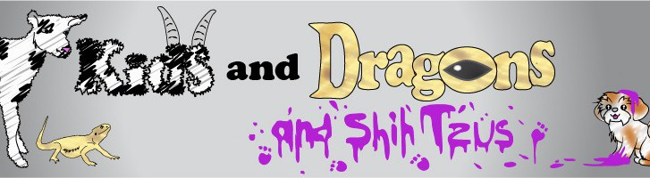 cropped-kidsanddragons-banner-880x2003.jpg